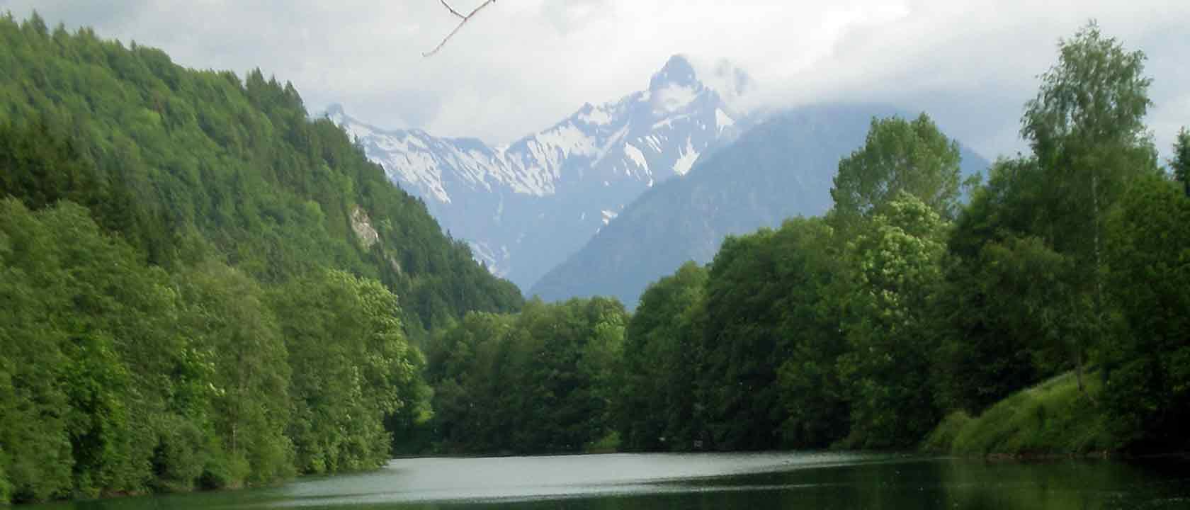 Der Auwaldsee